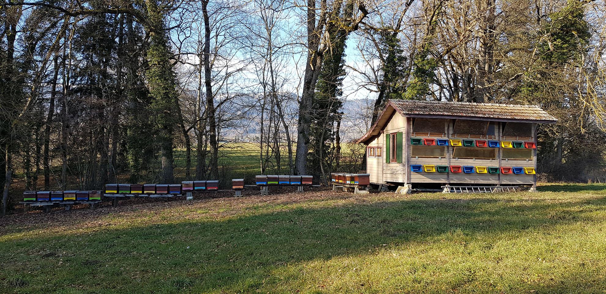 neuchatel-miel-suisse