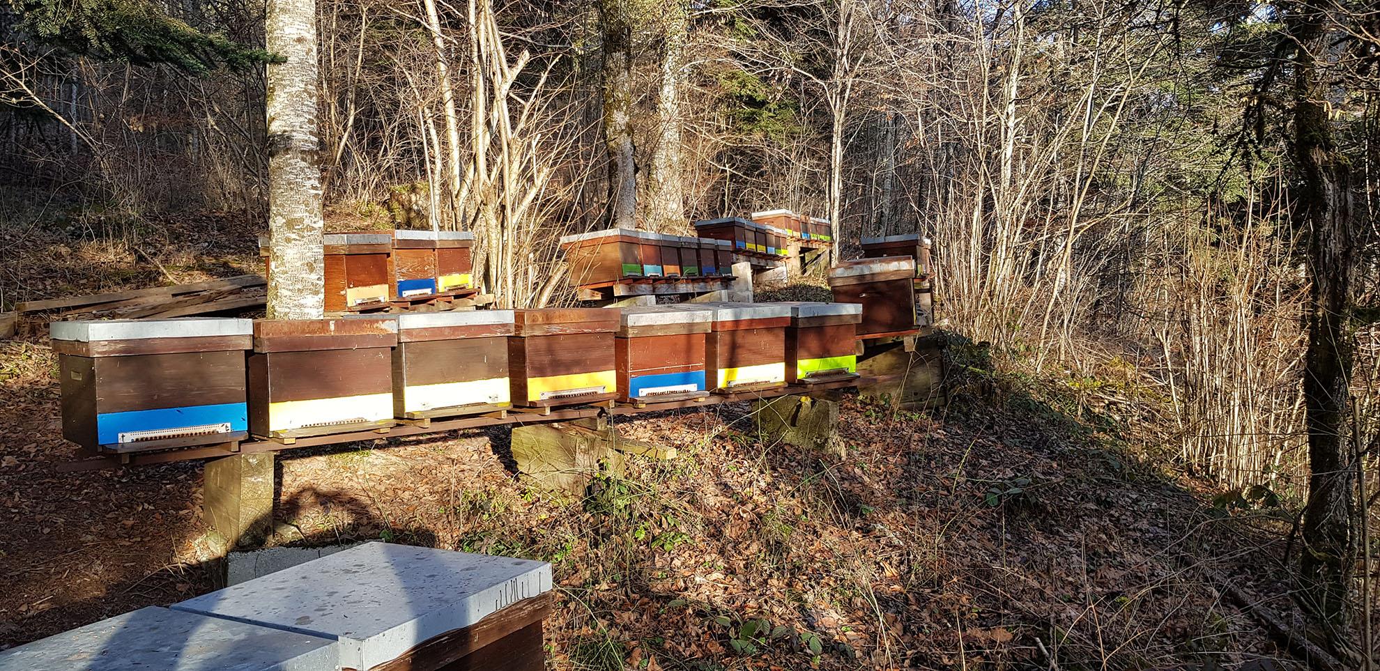 producteur-miel-suisse-neuchatel